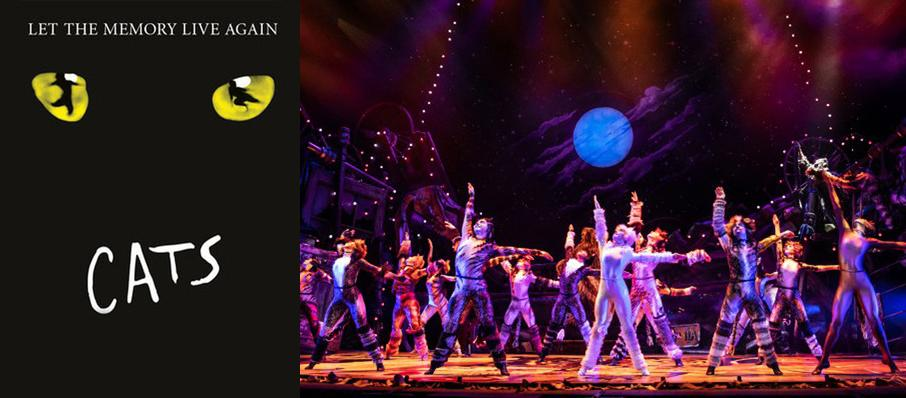 Cats at Proctors Theatre Mainstage